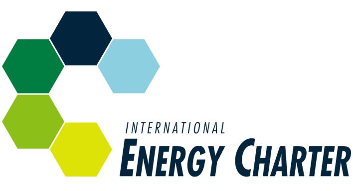 Energy Charter Treaty (ECT)